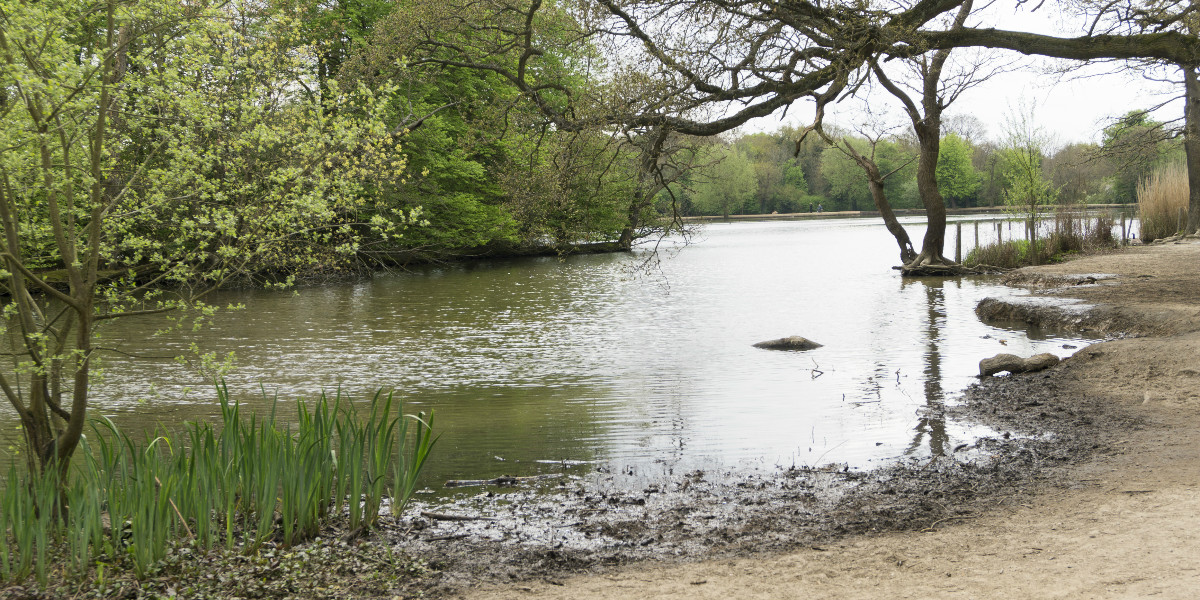 London Epping Forest